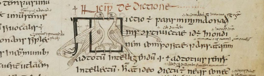 Detail from the glossed Irish manuscript of Priscian: St Gall, MS 904.
